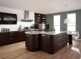 Cute Dark Kitchen Cabinets With Dark Hardwood Floors HARDWOODS