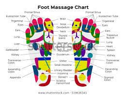 Foot Chart Foot Reflexology Chart Description Internal Organs Royalty