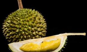 Dna Analysis Reveals Secret Of The Durian Fruits Smell Daily Mail