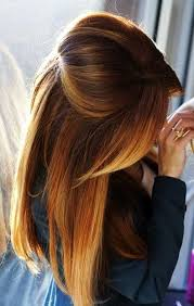 Chestnut Ombre Hair Color Hair Colors Idea In 2017