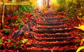 نتیجه تصویری برای پاییز و آبانی