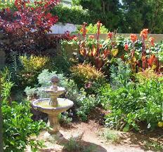 drought resistant garden. Drought Tolerant Gardens Australia Westminister Ca Lush Native Garden Resistant O
