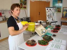 Atelier De Cuisine Aux Algues Par Scarlette Le Corre 27 Février 2019