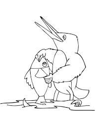 Cartoon Ijsvogel Met Vis Kleurplaat Gratis Kleurplaten Printen
