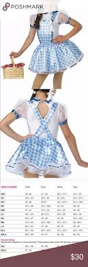 A Wish Come True Size Chart A Wish Come True Cs Dorothy Costume Ease On Down Brand New