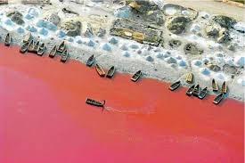 """Résultat de recherche d'images pour """"lac rose dakar"""""""