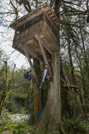 pete nelson s tree houses. 69 Best Pete Nelson S Tree Houses Images On Pinterest Of