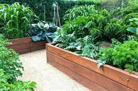 raised garden bed corners raised bed corners plastic raised garden beds backyard bed ideas 7 home