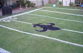 Build Your Own  Awesome FanMade Football Fields  ComplexFootball Field In Backyard