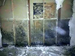 water seeping through basement wall how to stop water from seeping through basement walls interior decor