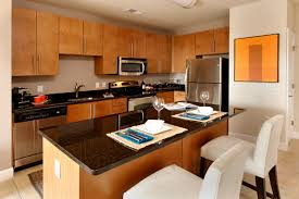 Efficiency Kitchen Apartment Efficiency Kitchen Space In Apartment With L Shaped