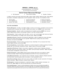 Employee Relation Manager Resume Delectable Senior Human Resources Manager Resume