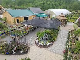 garden center nursery in greensburg latrobe pa country farms