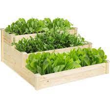 wooden raised vegetable garden bed 3