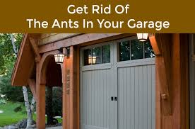 neighborhood garage door service of riverside ca has seen all kinds of pests become problems for people one of the most common pests to worry about in