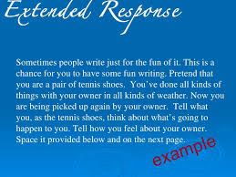essays 13 extended response