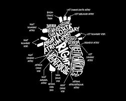 Cardiology T Shirt Designs Anatomical Heart Shirt Cardiac Nurse T Shirt File Png Pdf