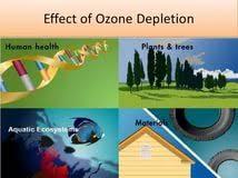ozone depletion essay opinion essay topics for th graders who ozone depletion essay on ozone layer depletion