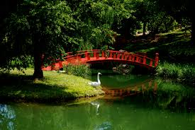 Japanese Style Garden Bridges 10 Images About Gardens On Pinterest Who Goes There Garden