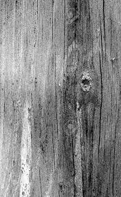 Patroon Van Oude Verweerde Houten Wand Grote Achtergrond Textuur