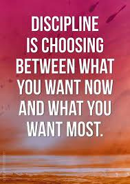 Discipline Quotes Delectable Discipline Is The Secret To Long Term Success MoveMe Quotes