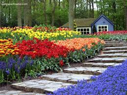 Small Picture 28 Beautiful Flower Garden My Amazing Things Blog Beautiful