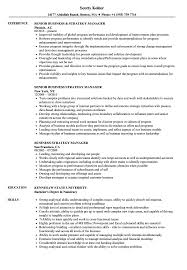 Business Manager Resume Sample Business Strategy Manager Resume Samples Velvet Jobs 15