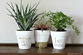 Planter Pots Go From Boring To Spectacular The Diy Queen
