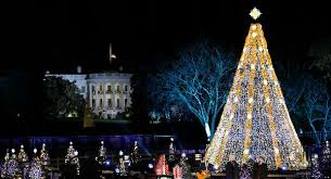 pictures of lighting. helping kick off the national park service centennial in 2016 theme of 2015 christmas tree paid ode to this momentous occasion pictures lighting
