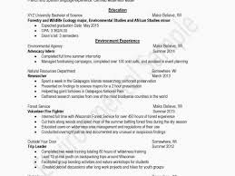 12 How To Put A Minor On A Resume Simple Invoice