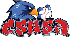 Rizco Design Logo Design Contest Entry Logo Contest Logo Design