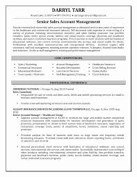Portfolio Manager Resume Sample Senior Account Manager Resume Resume For Study 19
