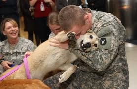 Image result for love of receiving back soldiers in the US