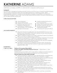 Program Manager Resume Summary Sidemcicek Com