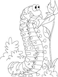 Very Hungry Caterpillar Coloring Pages Printables Very Hungry