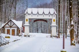 Картинки по запросу воеводино парк зимой