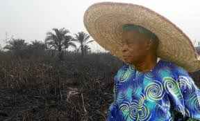 Image result for Police begin investigation into Olu Falae's farm burning