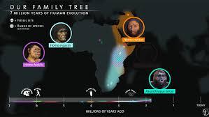 Seven Million Years Of Human Evolution