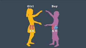 Generate Baby Picture From Parents Boy Or Girl How Genetics Determine Your Babys Gender Parents
