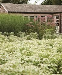 flower garden designs. Oehme, Van Sweden Hamptons Garden Design Calimesa, CA Flower Designs S