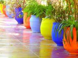 jardin majorelle potted plants