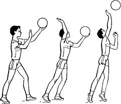 Техника игры в волейбол Книги Библиотека международной  Техника игры в волейбол Книги Библиотека международной спортивной информации