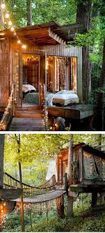 Exotic Tree Houses Best 25 Cool Tree Houses Ideas On Pinterest Tropical Outdoor