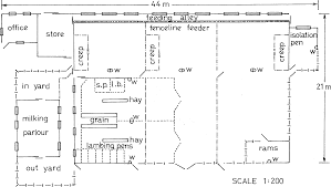 Stables Design Layout Cattle Barn Plans And Designs Modern House