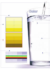 Dehydration Urine Color Chart Free Download