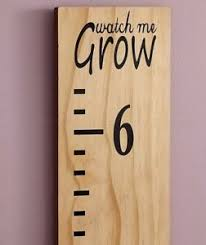 Details About Ruler Growth Chart Watch Me Grow