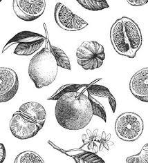 レモンオレンジみかんのシームレスなパターン手描きのイラスト