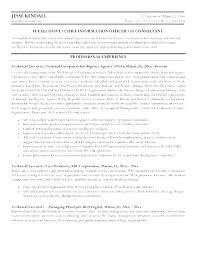 Management Resume Samples Stunning It Executive Resume Samples Curriculum Vitae Examples Service Medium