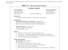 Example Of A Good Objective On A Resume Customer Service Resume Objective Statement Sample Resume Objective