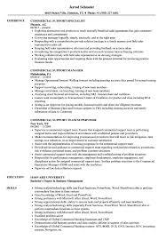 Business Support Manager Sample Resume Commercial Support Resume Samples Velvet Jobs 23